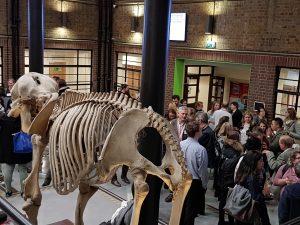 Reception beside animal skeleton